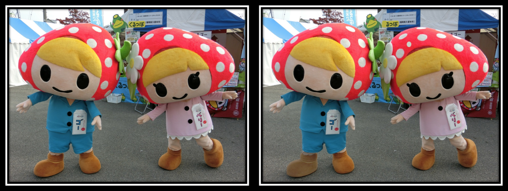 Takagi Village's Mascots Berry-chan and Go-kun - 6 differences